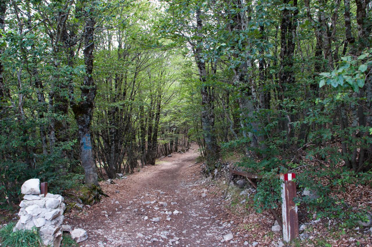 Escursione Rifugio Sebastiani-2.jpg