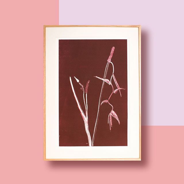 Hanging Heliconia is a tropical flower which common names include lobster-claws, toucan beak, wild plantains or false bird-of-paradise.  It is a Handmade monoprint. Check out www.bouquetresidence.com  #bouquet_residence #handmadeartwork #monoprint