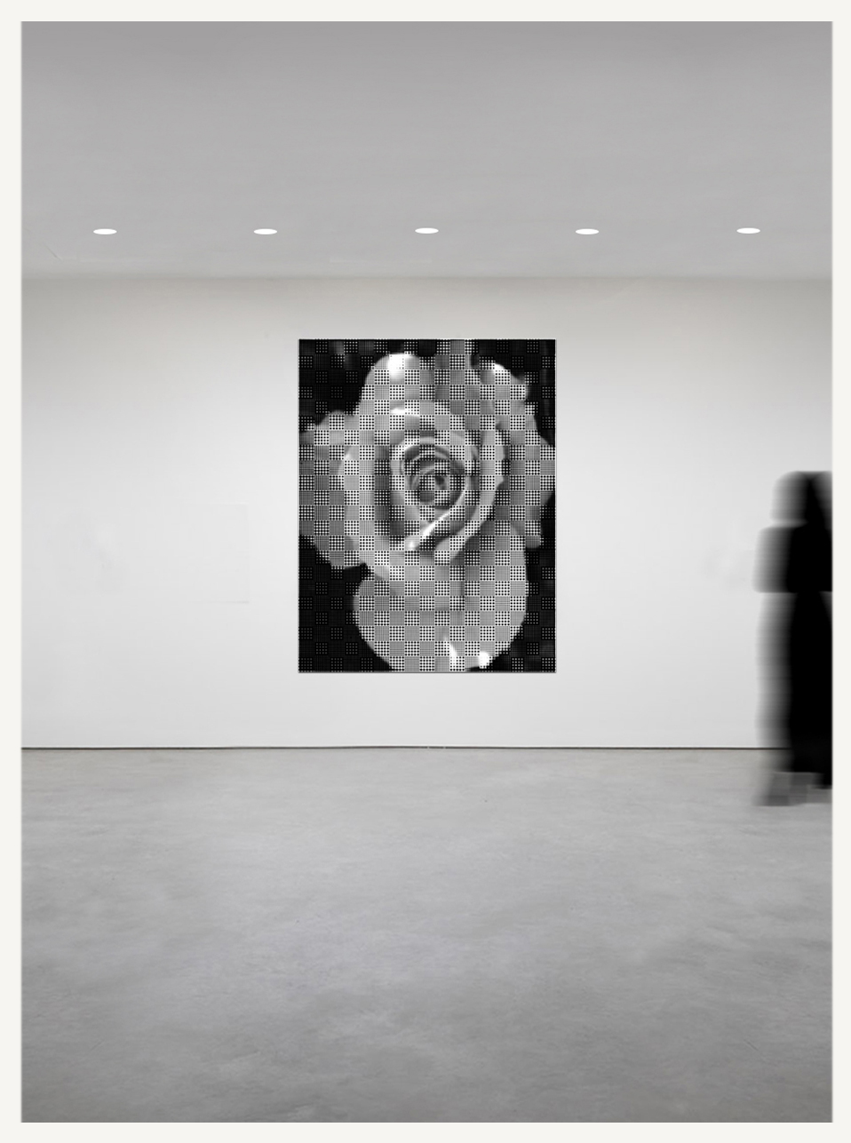 Rose - Graphic with Border GALLERY.jpg