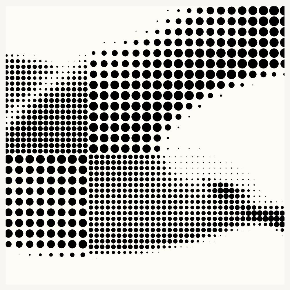 Seagull2 - DETAIL.jpg