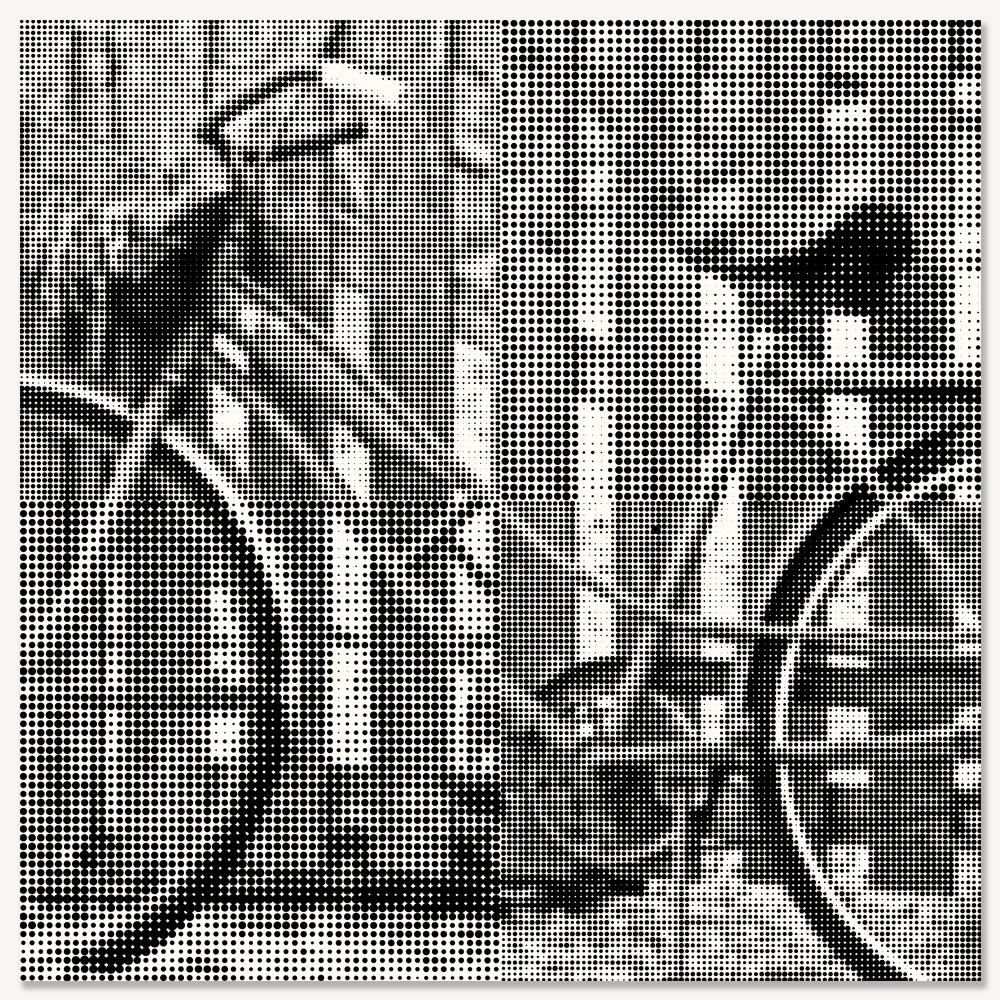 BICYCLE V - LARGE.jpg