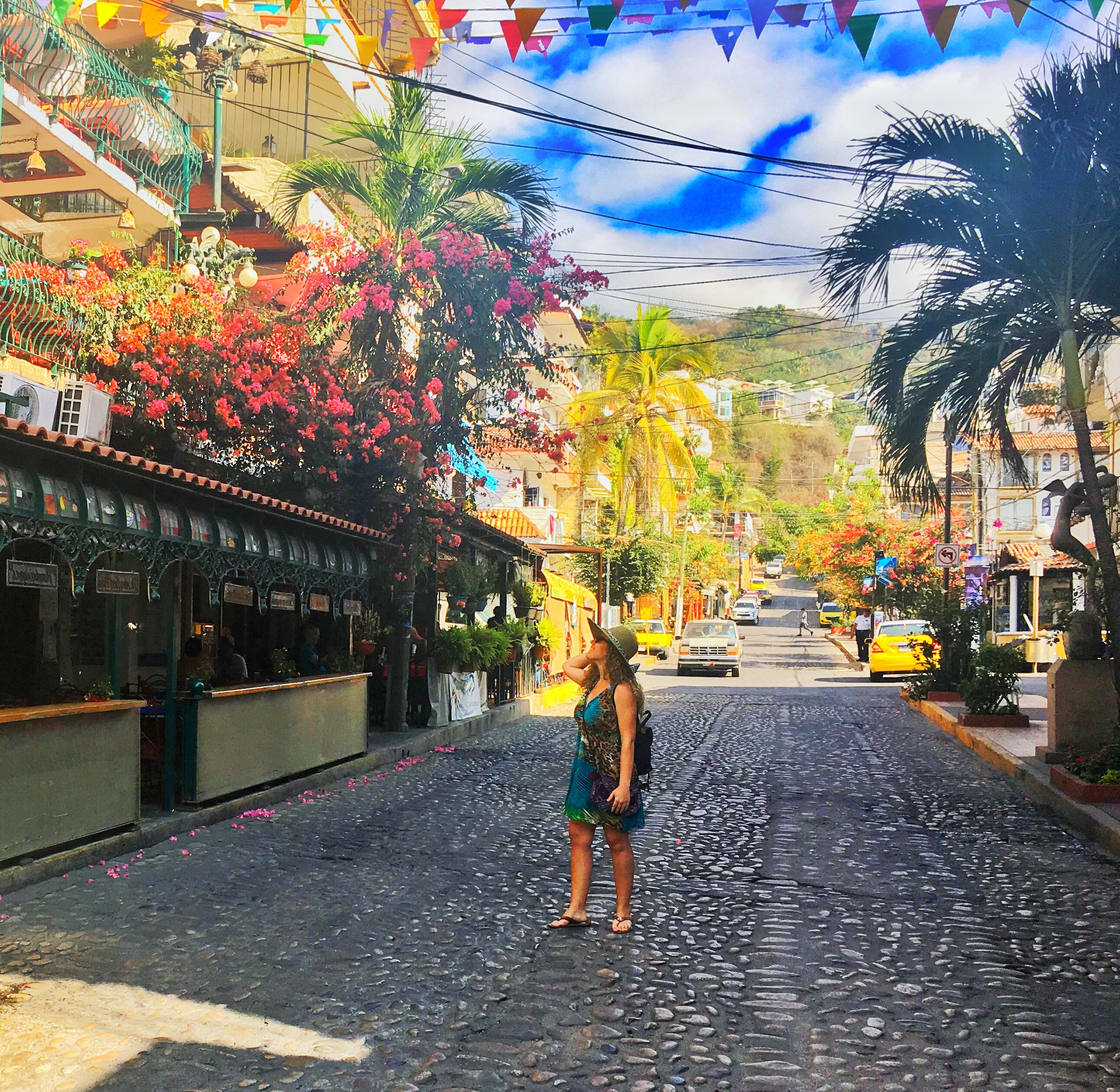 Wandering the streets of downtown PV