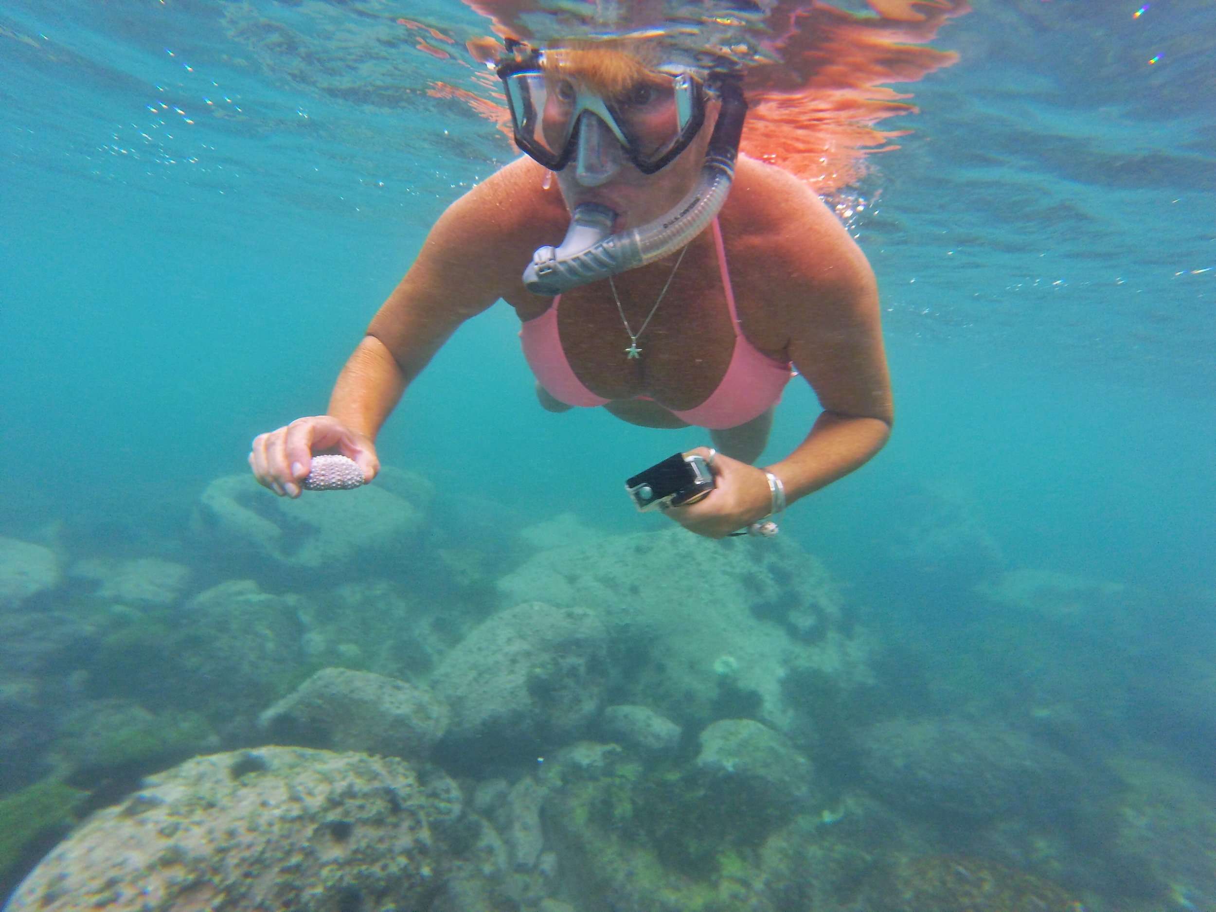 Finding treasures hiding in the coral