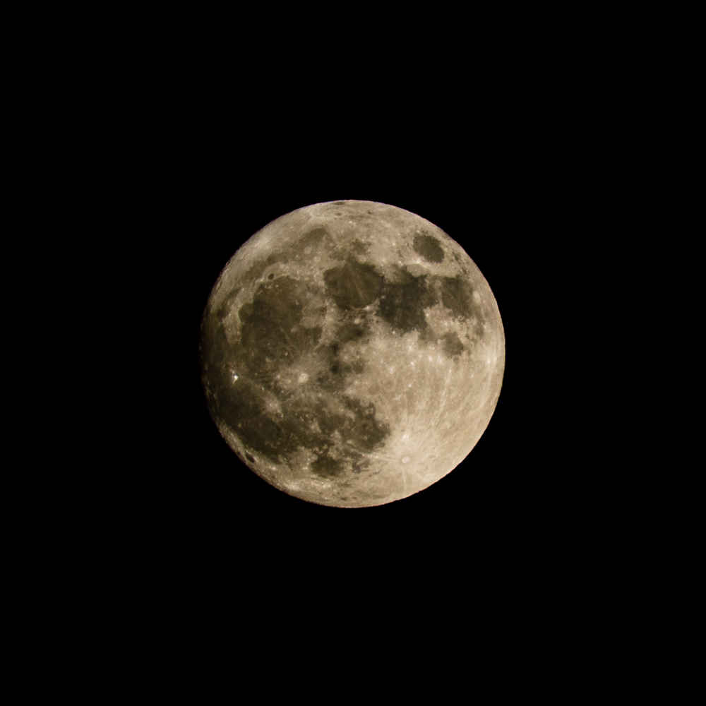 """The """"Beaver Super Moon"""" photographed using a 600mm f8 manual focus Sigma Reflex Catadioptric Lens.  ISO200 f8 1/500"""