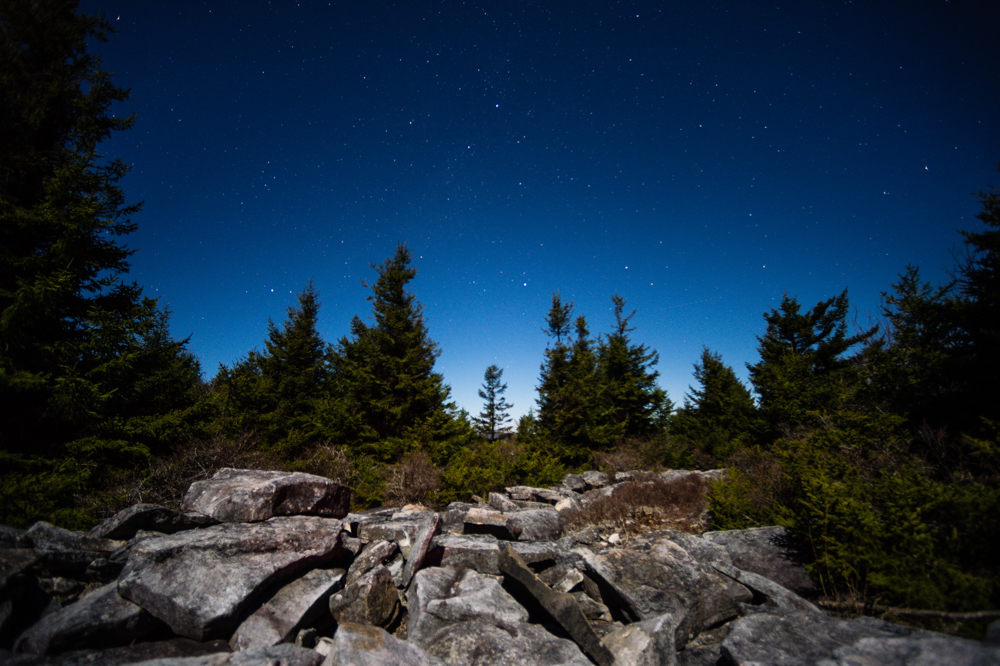 A field of rocks, diverse flora, and stars forever can be seen atop Spruce Knob.