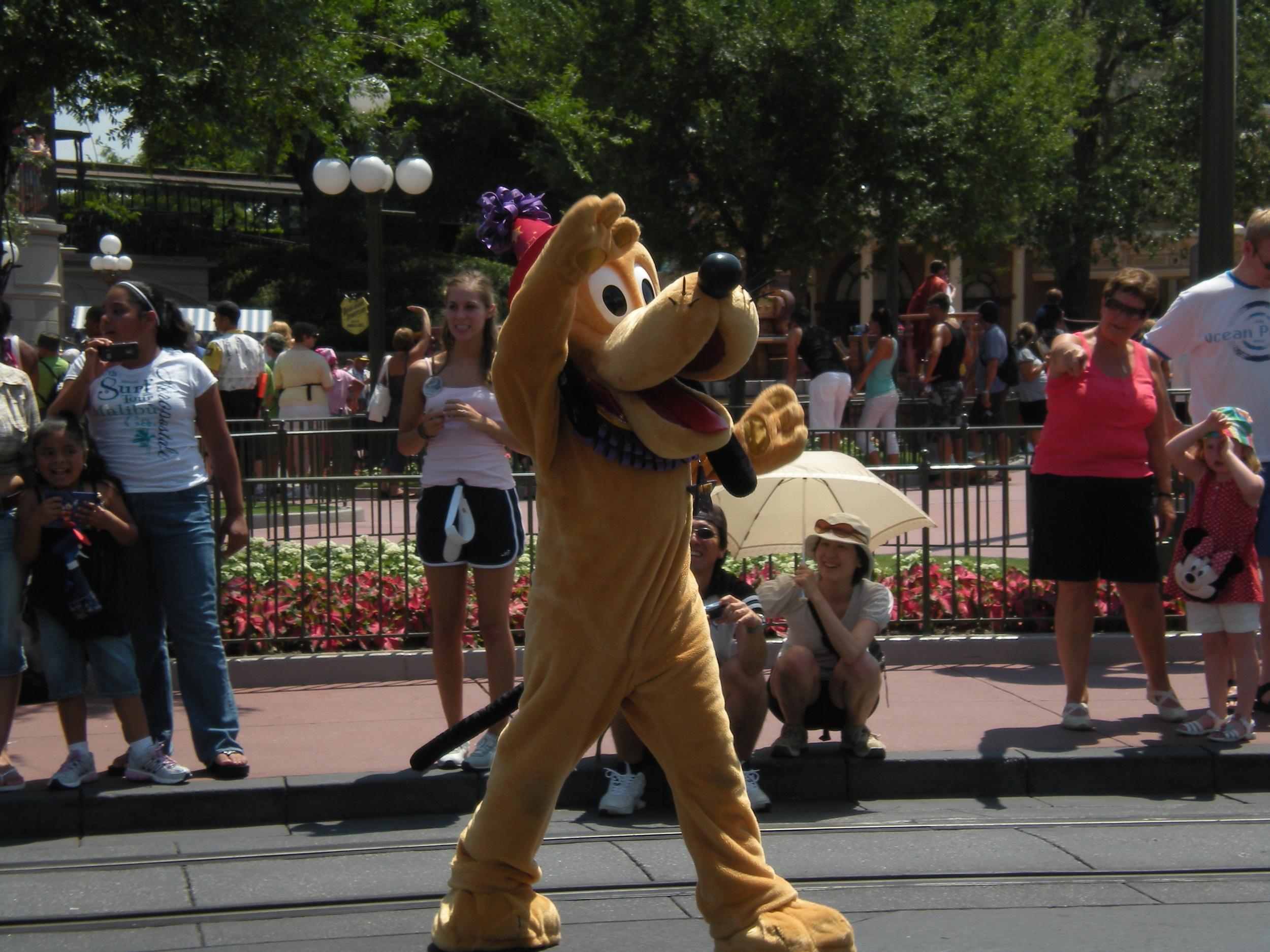 Dog -Pluto in Celebrate Today Parade at Magic Kingdom, WDW, Florida