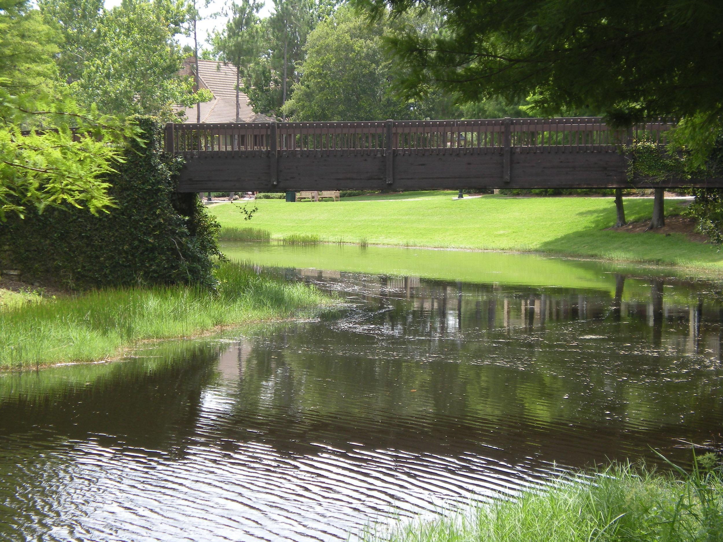 Bridge over Sassagoula River, Port Orleans Riverside, Walt Disney World - Author's collection
