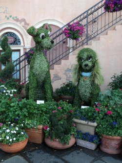 Lady and Tramp topiaries at Epcot - Author's collection