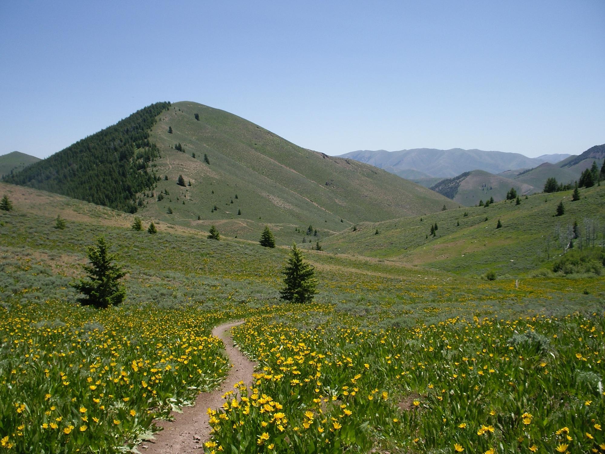 vanlife-rv-campervan-rent-idaho-sun-valley-boise-wandervans-wanderlust-skiing-snowboard-biking-hiking-outsidevan-Wandervans-stanley-flow-trail-sunvalley