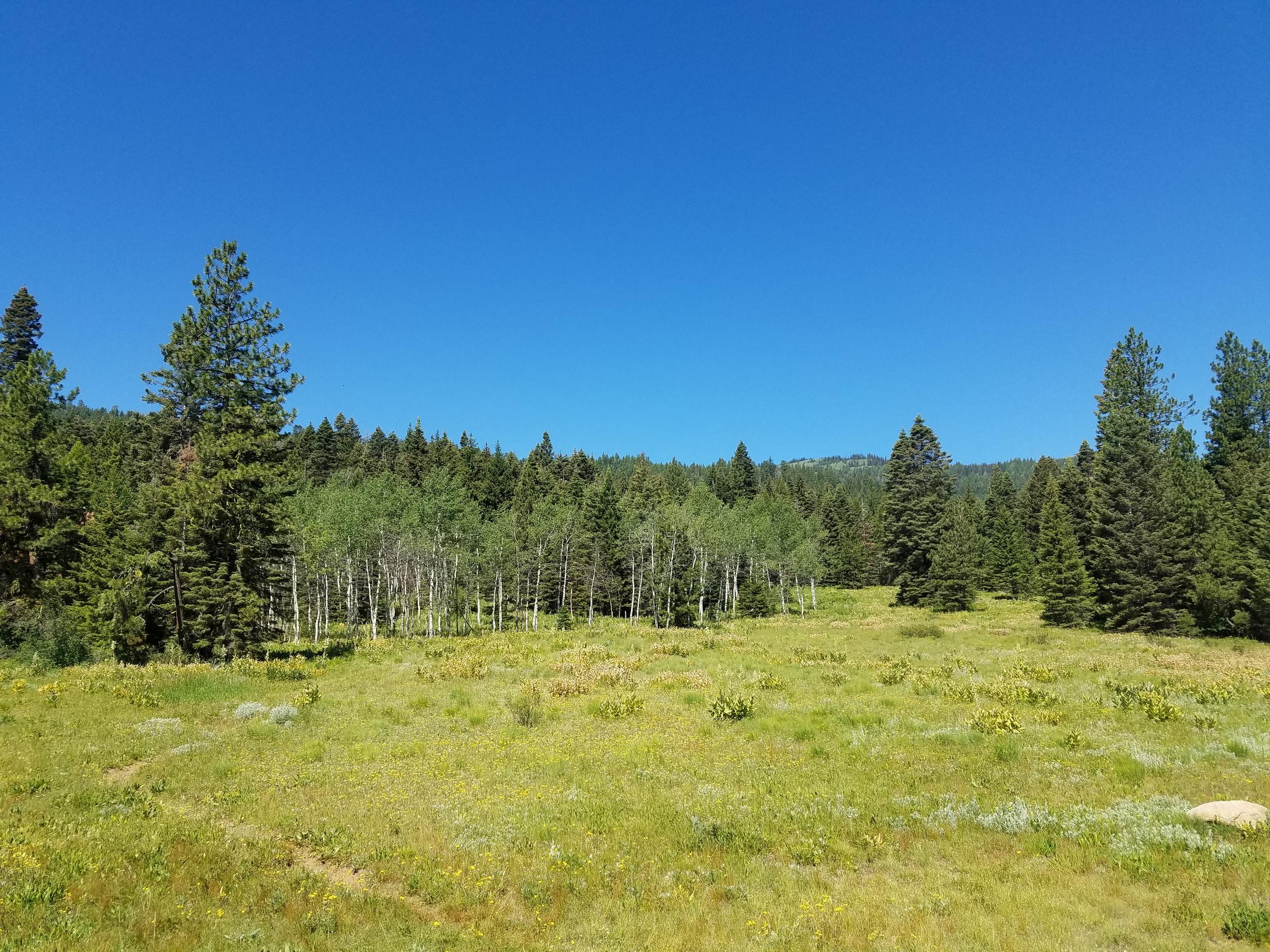 vanlife-rv-campervan-rent-idaho-sun-valley-boise-wandervans-wanderlust-skiing-snowboard-biking-hiking-outsidevan-Wandervans-stanley-flow-trail