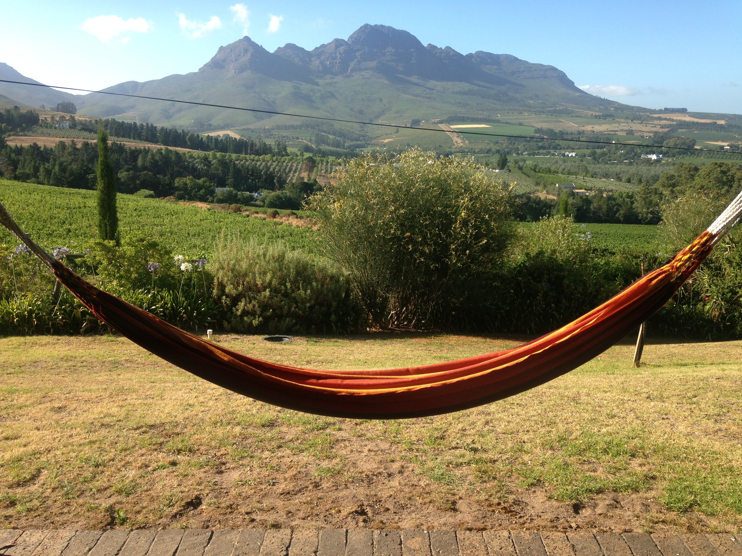 Put a smile in your morning / Wine route