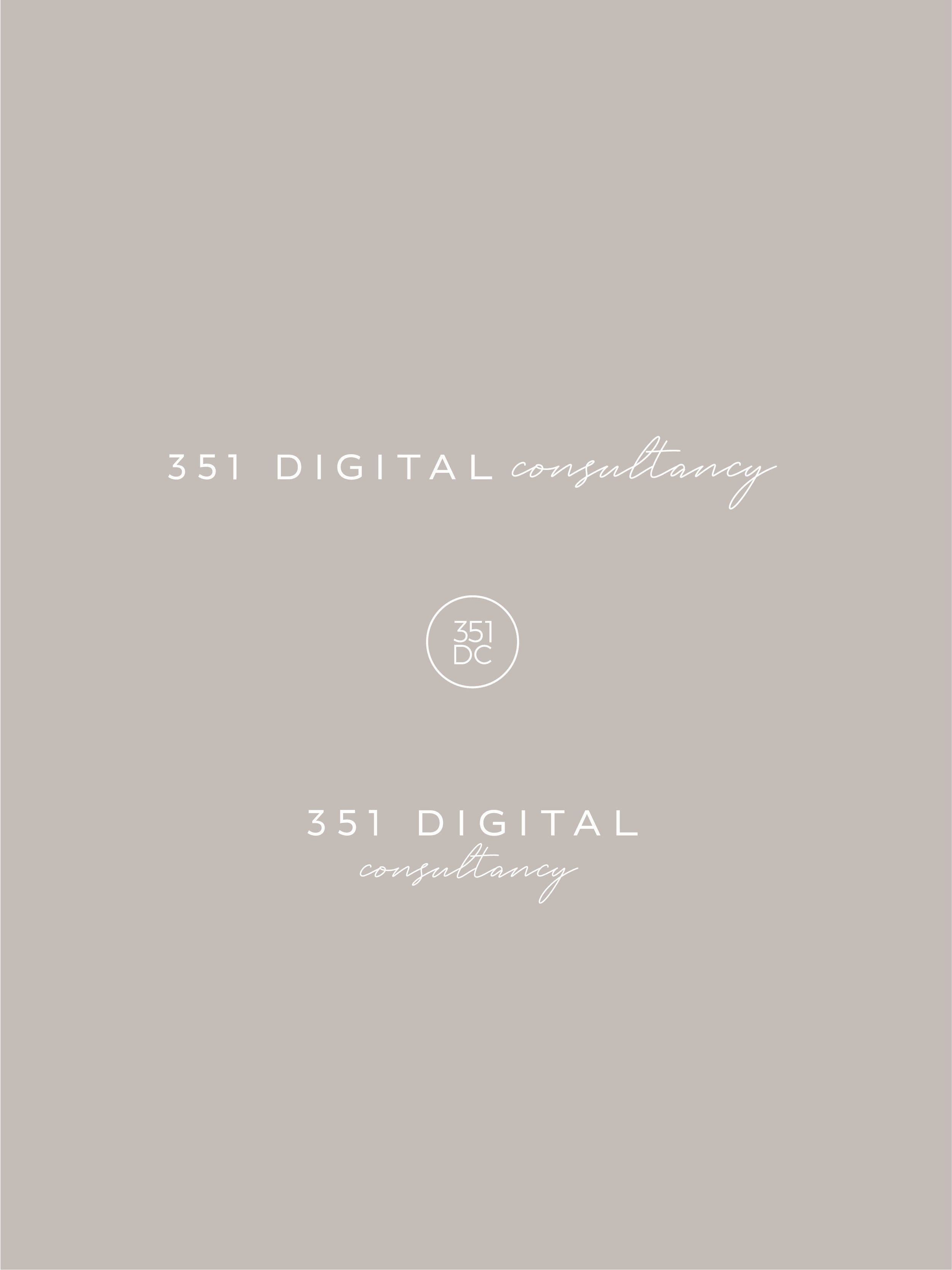 351 Digital Consultancy logo elements - by January Made Design