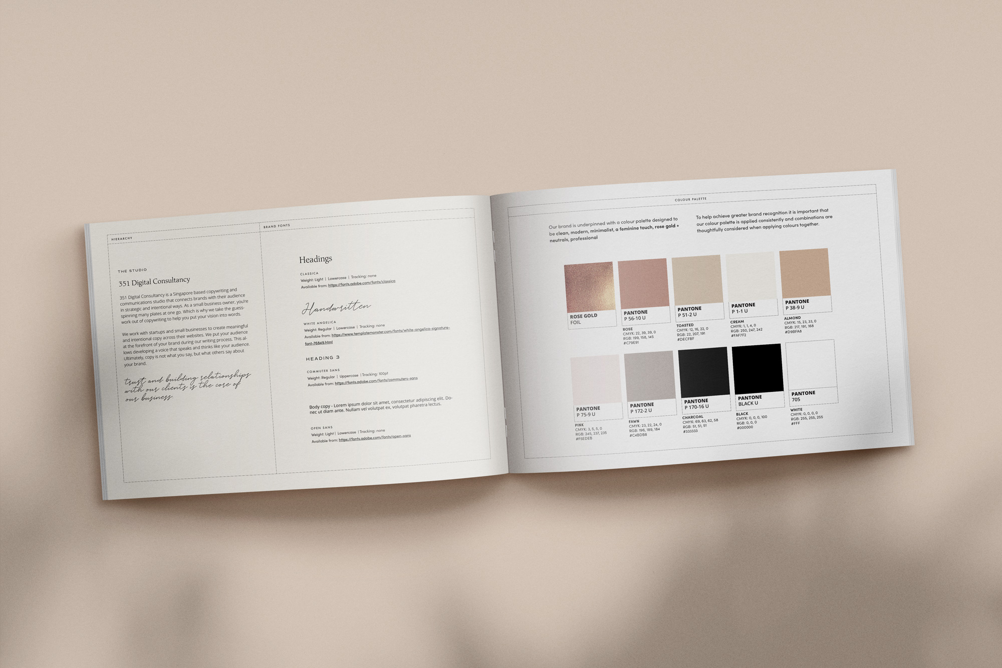 351 Digital Consultancy guidelines - by January Made Design