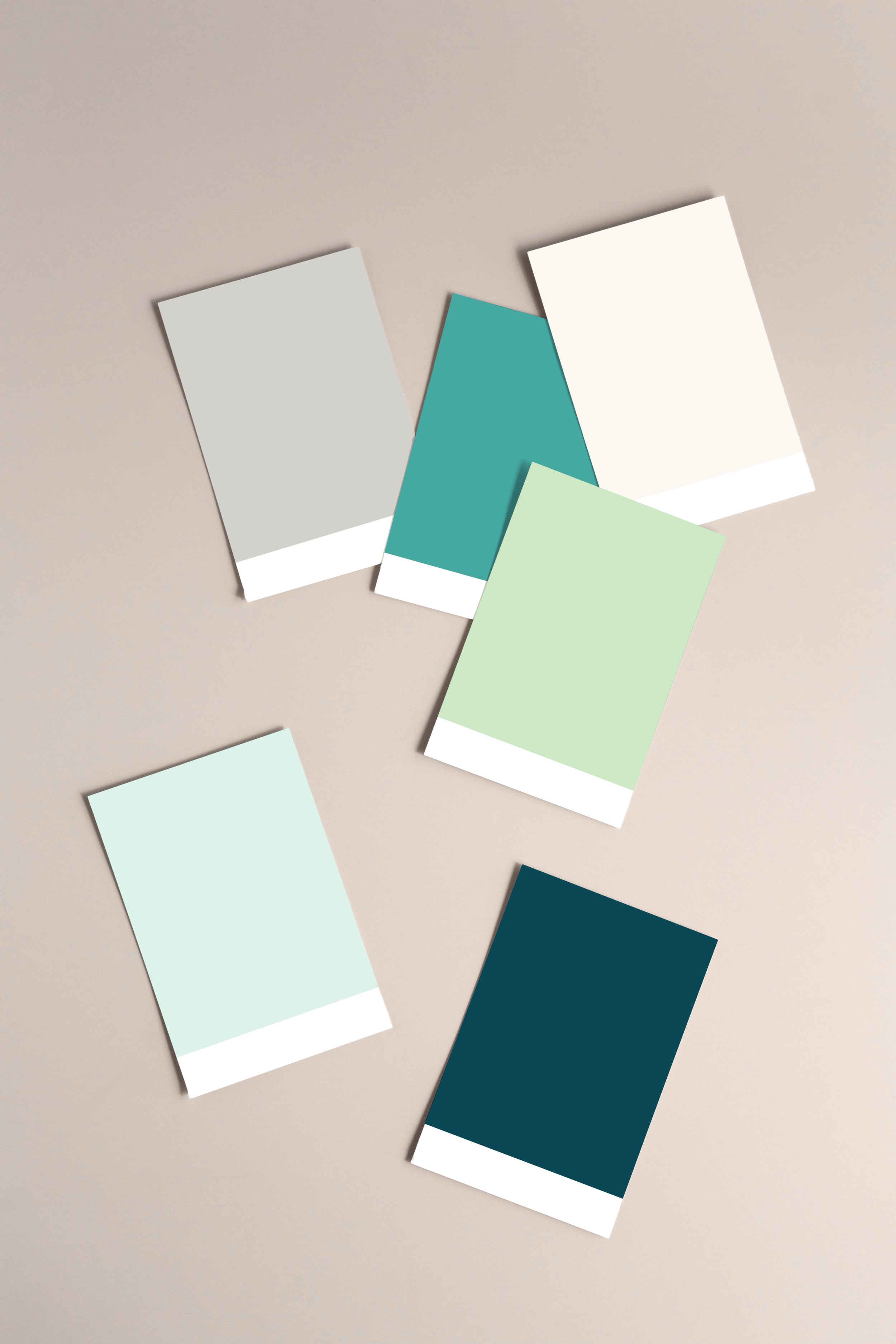 Vicki Evans Coaching colour palette - by January Made Design