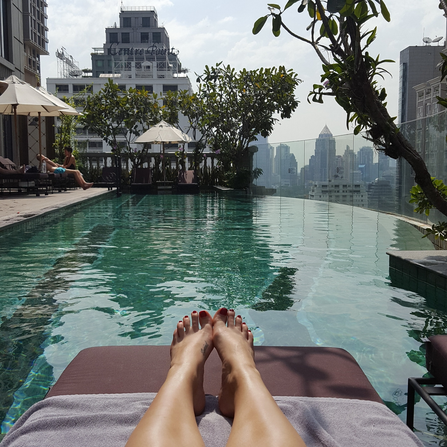 The rooftop pool at  Hotel Muse