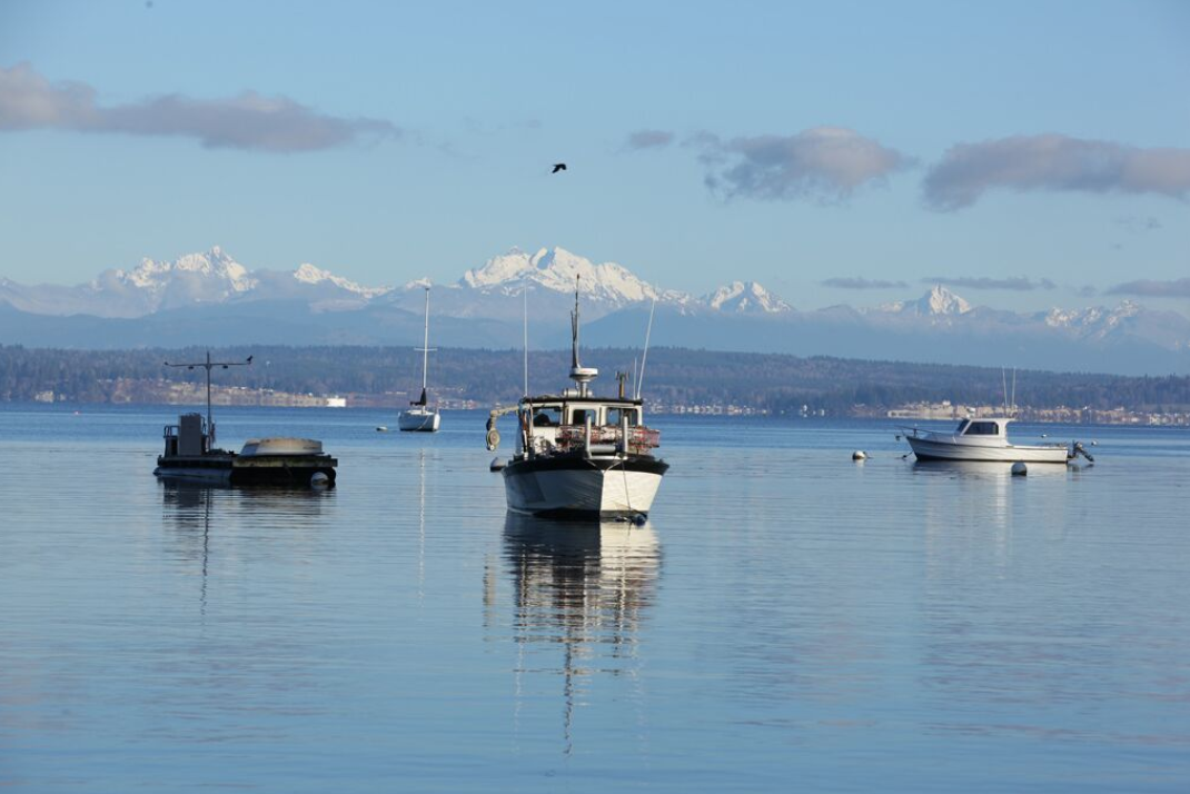 South Whidbey - offers the vibrant communities of small Island towns, beautiful beaches and scenery and a focus on the arts and good living. South Whidbey is also known for it's excellent schools.