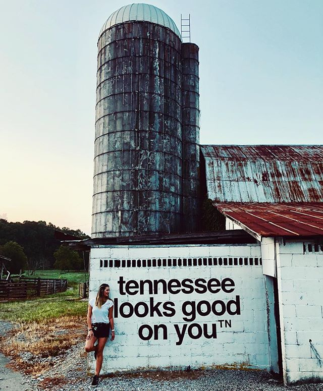 I've moved around a lot in my life & left pieces of my heart in various places throughout the country. My Nashville house is officially the one I have lived in the longest. ((8 years)) I have my Massachusetts roots growing in Tennessee soil & loving every minute of it. 💛 • • • #grow #roots #learn #love #tennessee #agooddaytohaveagoodday #gooddayfarm #countrygirl