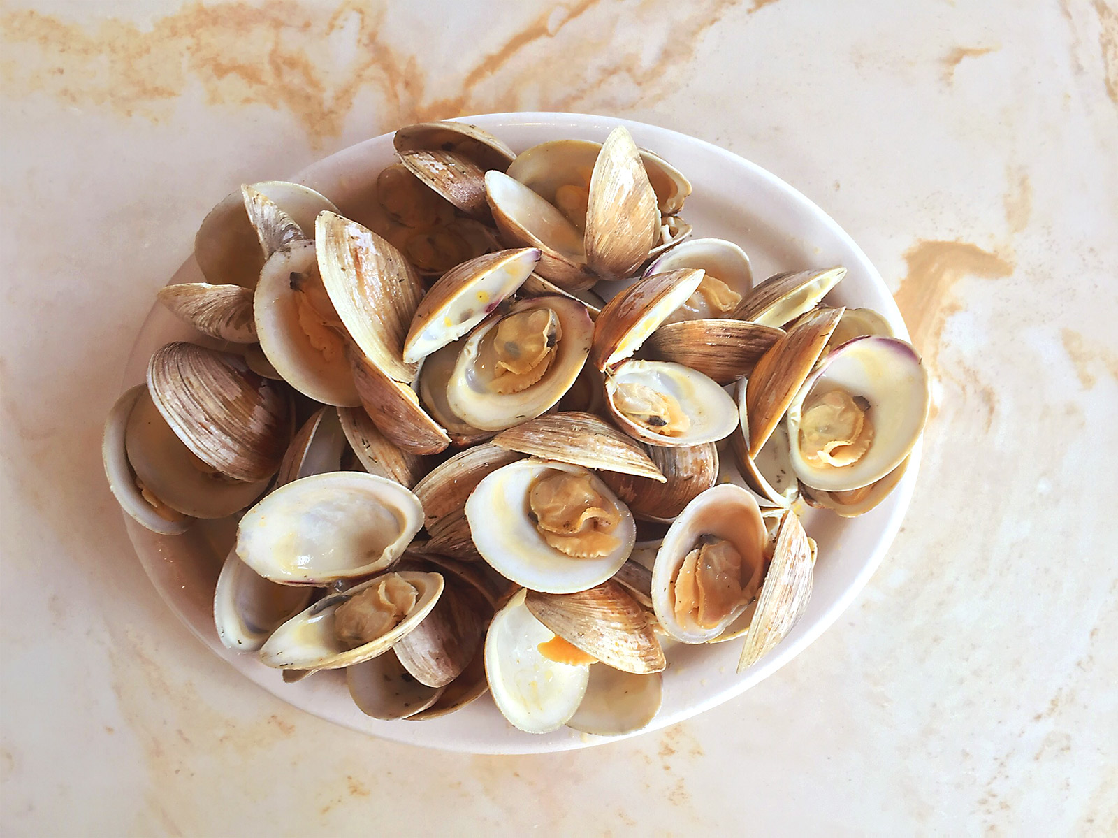clams-1.jpg