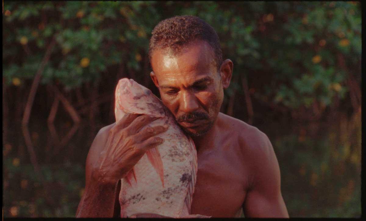 Photograph still of  O peixe  (2016). From 32nd Bienal website.