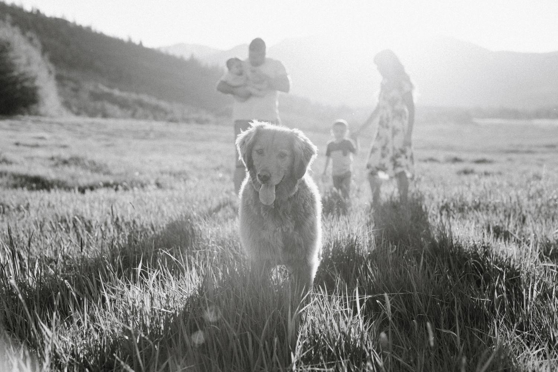 utah-mountain-family-photography-0041.jpg