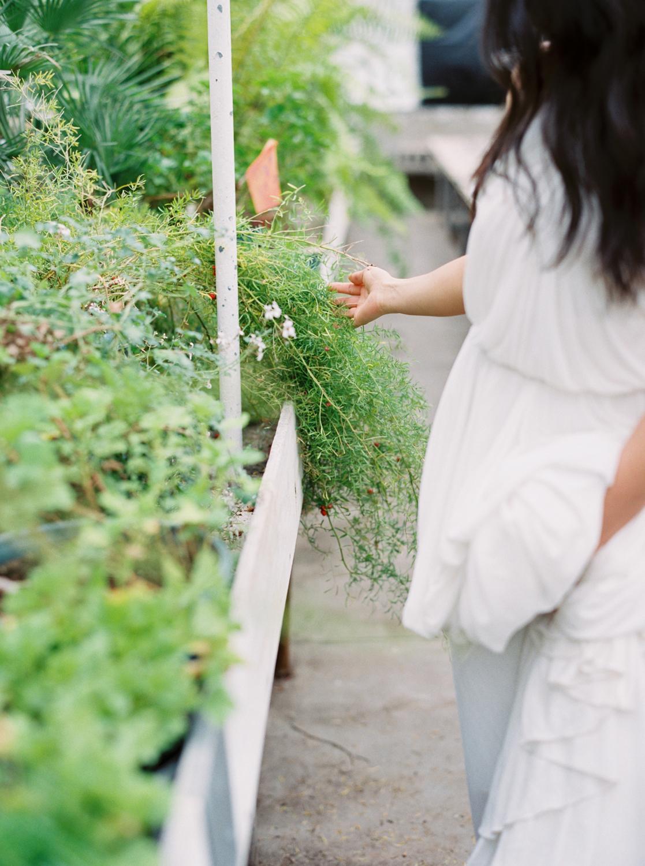 greenhouse-editiorial_0028.jpg