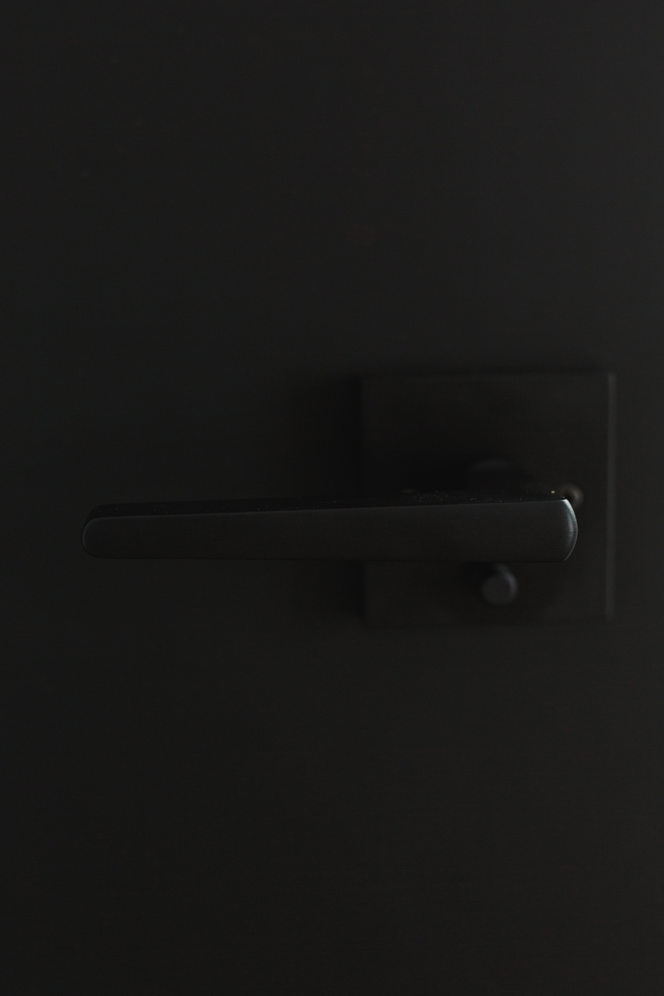 EHD-January-Interiors-0007.jpg