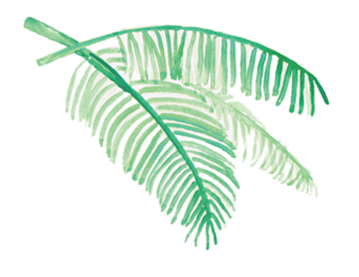 palm-tree_07.png