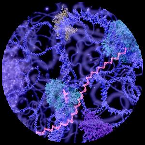Synthetic Biology Biometrology Metrology