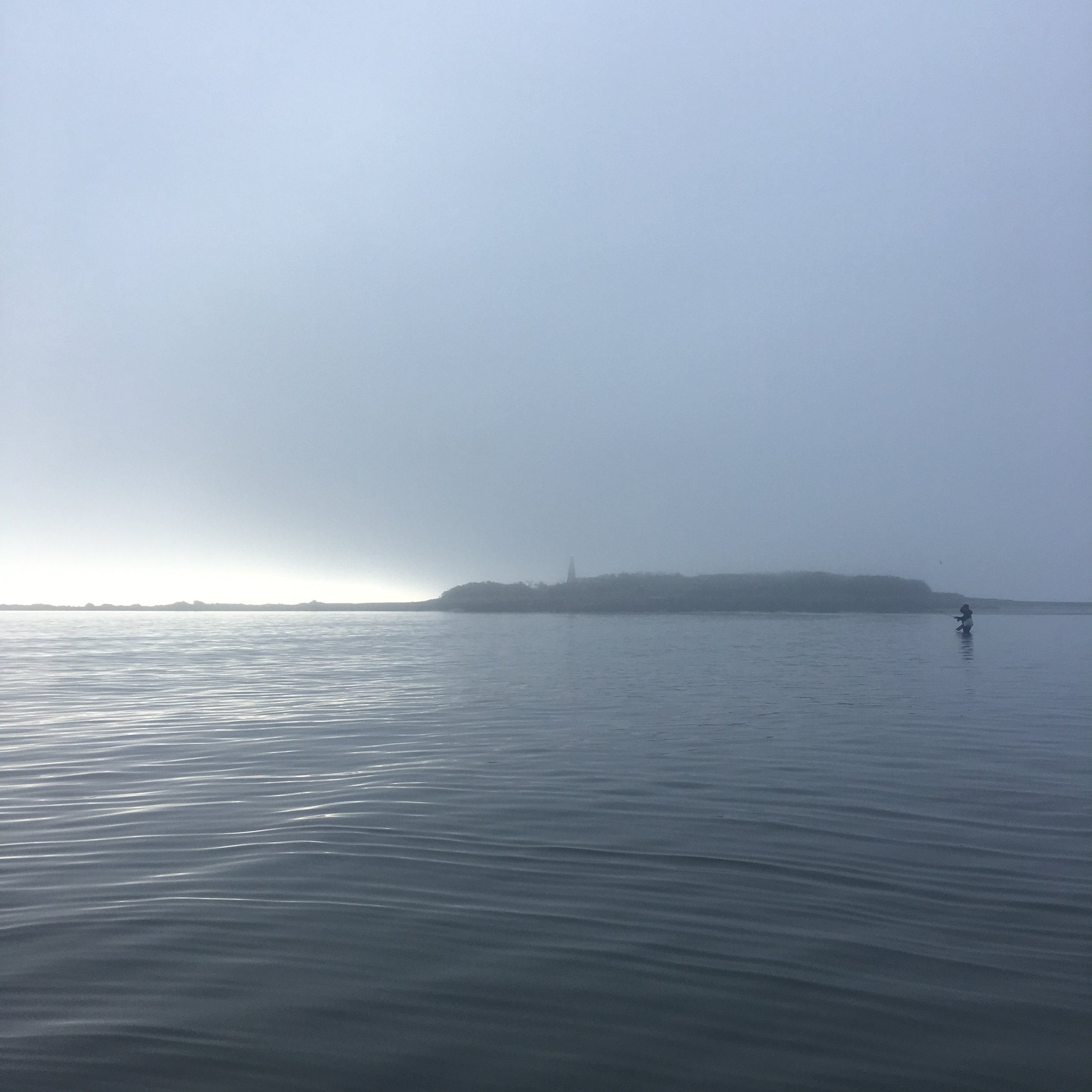 Foggy sunrise on the coast of Maine.