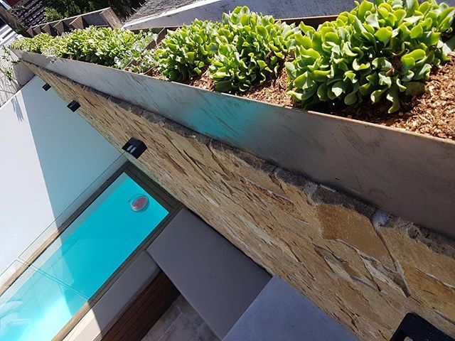 Our Waverley project with custom made corten steel troughs. We look forward to seeing the plants mature and troughs weather into place against the natural sandstone below. . . #botanicculture #plants #plantlife #green #plantlife #custommade #cortensteel #sandstone #naturalstone #succulents #nature #plantlove #botanicalstylist #livingwithplants #greenthumb #gardendesignsydney #gardendesign #courtyardplantssydney #courtyarddesign #potplants #landscapedesign #landscapedesignsydney  #gardenmaintenancesydney  #plantsofinstagram