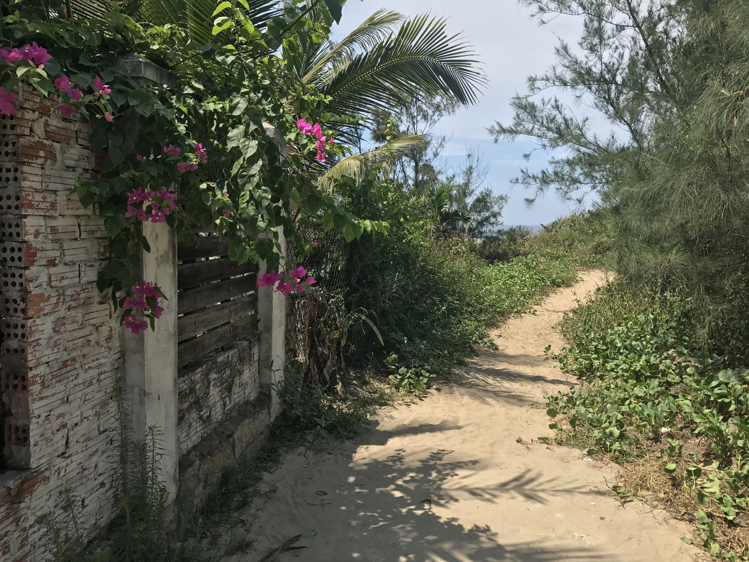 Path From Our Airbnb To An Bang Beach
