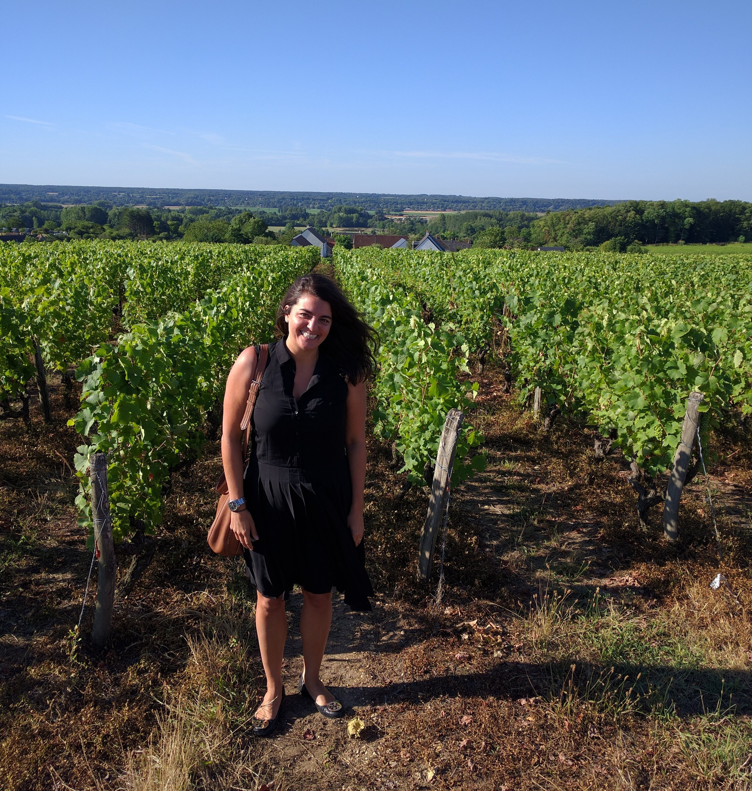Domaine Thierry Cosme's vineyards