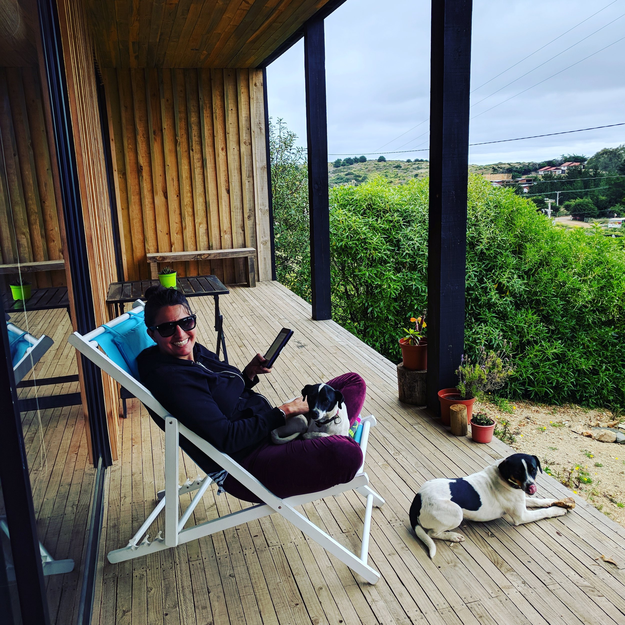 Airbnb puppies - Reineta and Conger