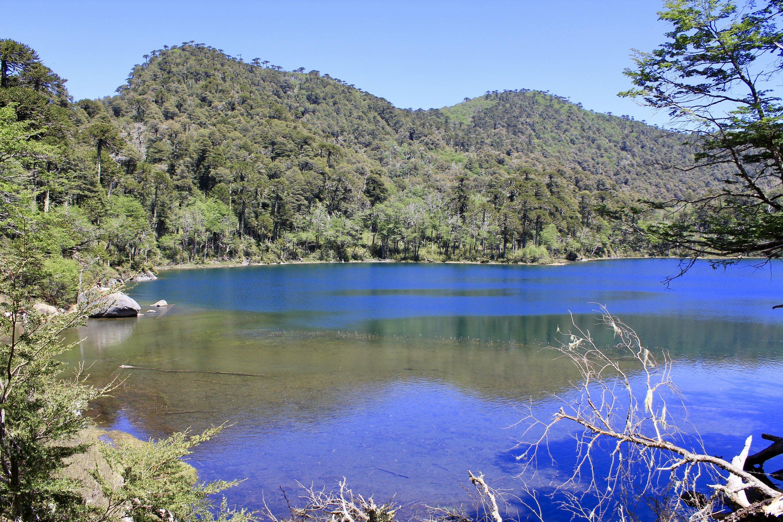 Lake Verde