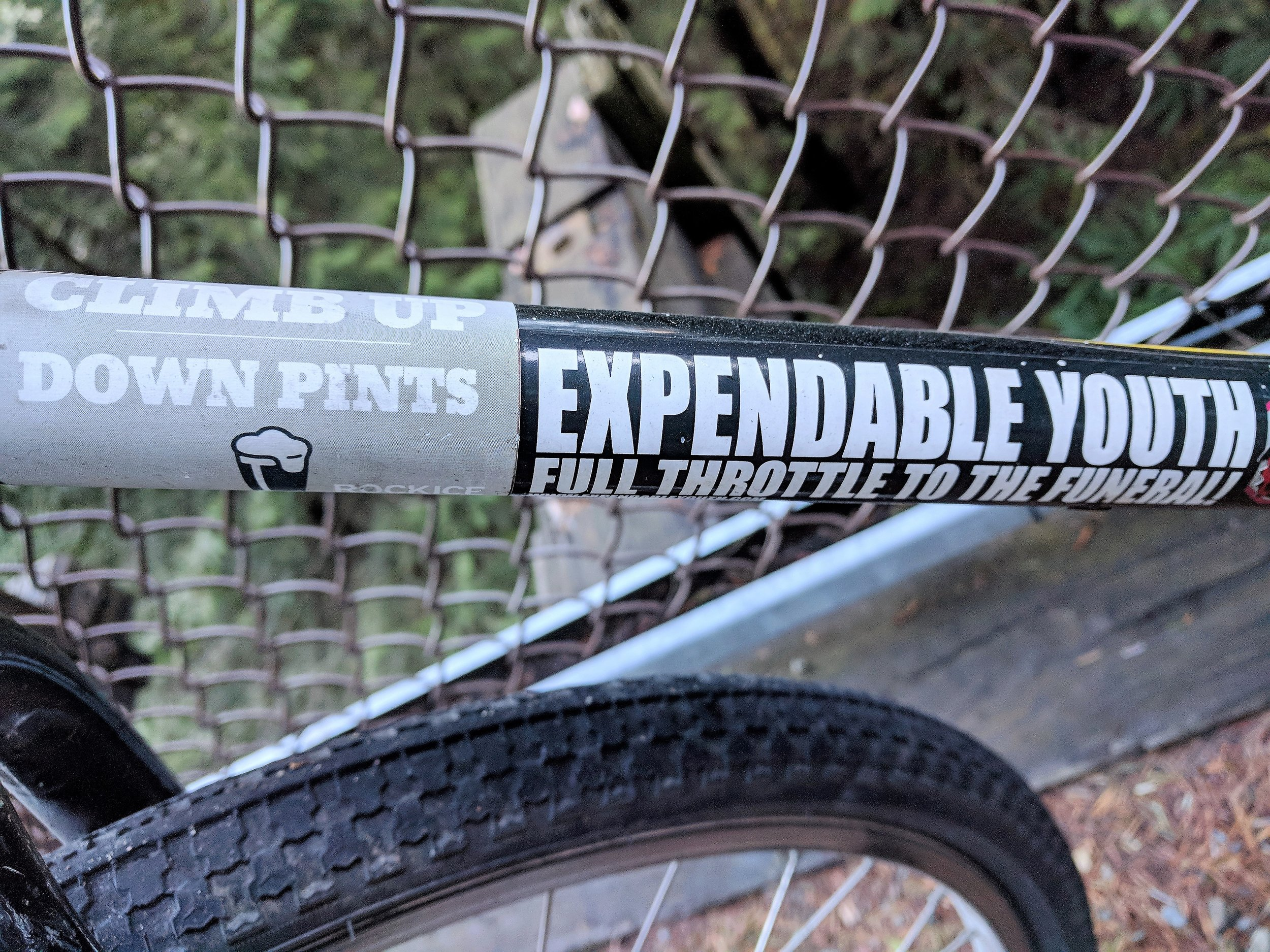 Stickers on the bicycle my brother loaned me: Climb up, down pints -- Expendable youth, full throttle to the grave! :)