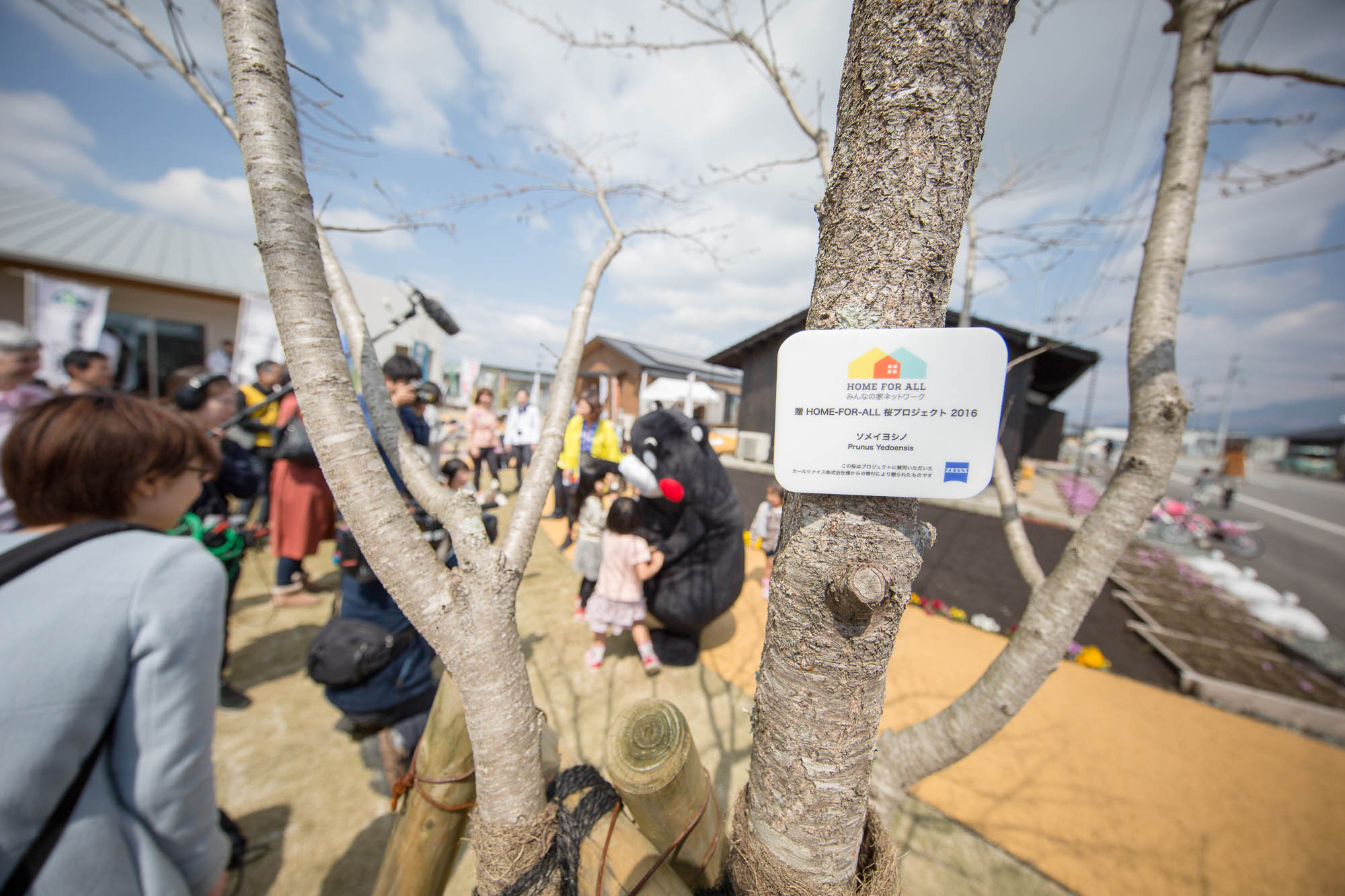一本一本の木にプレートが取り付けられます