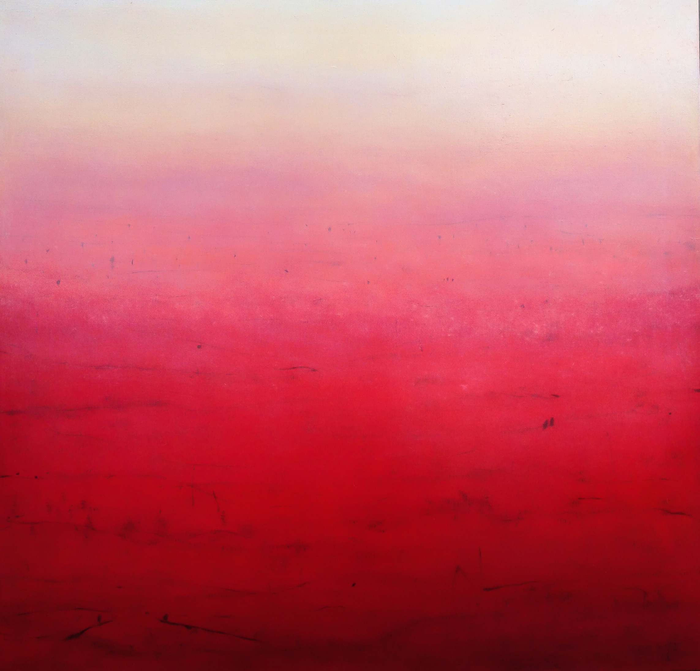 Above: Patricia Heaslip,  Trust Yourself,  Oil on Canvas, 107 x 102cm, P.O.A.