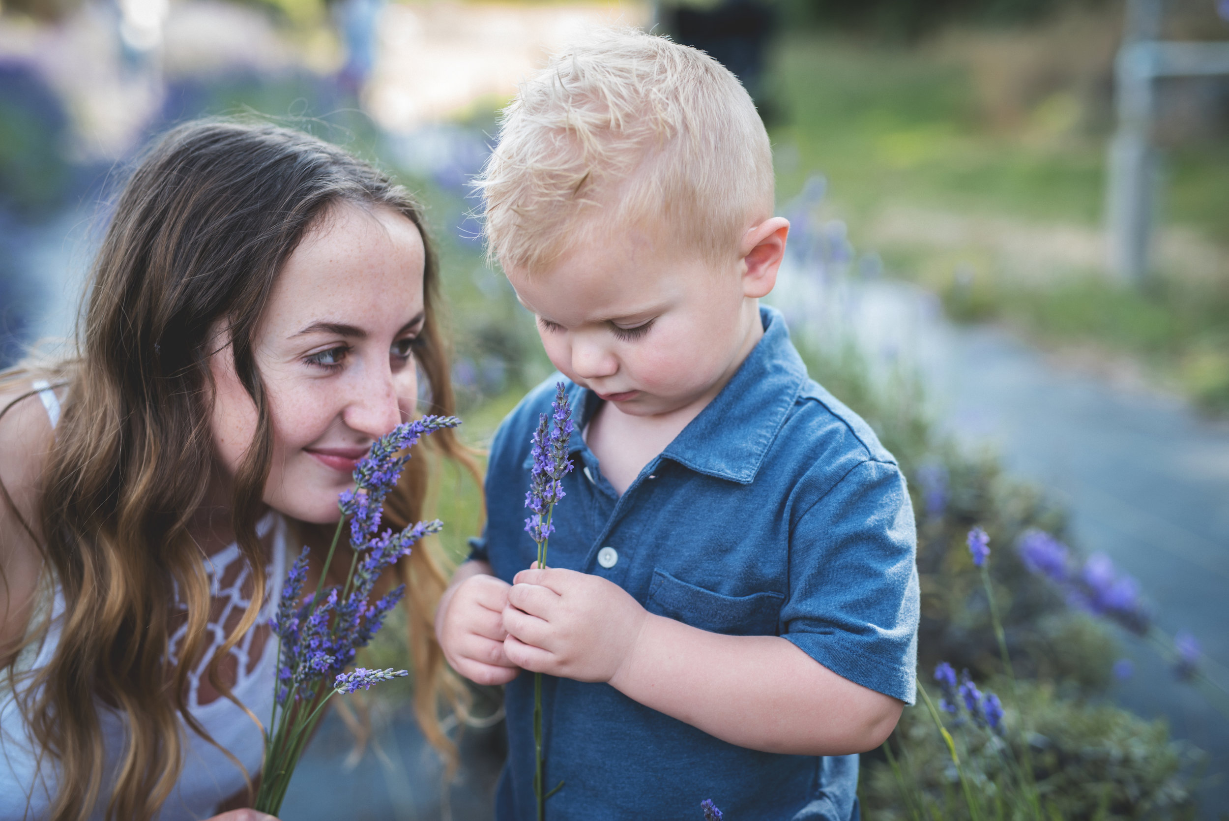 ana and carter smelling lavender, kristingroverimages, snofalls lavender field