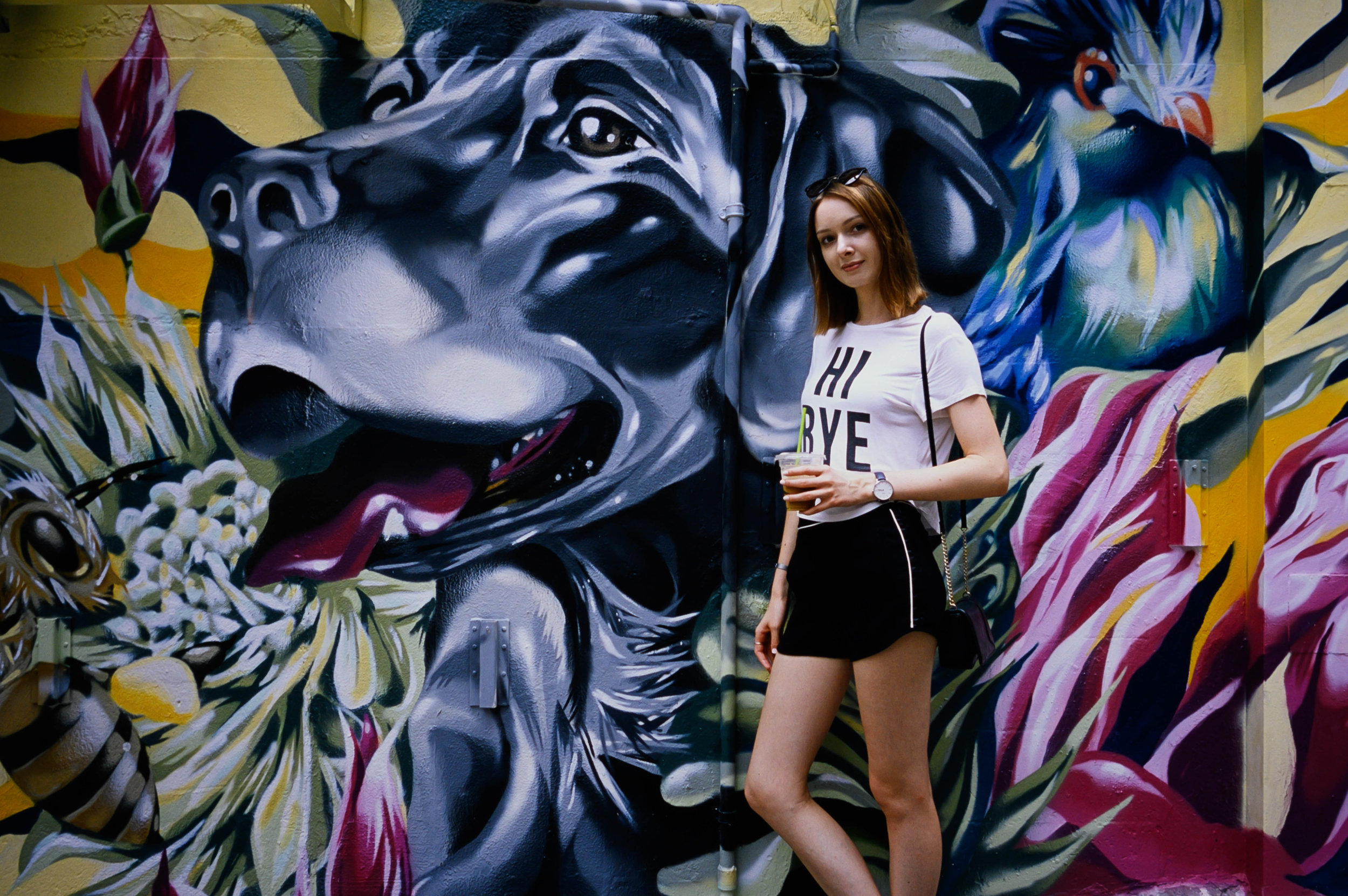 Fujifilm Provia 100F @ 28mm Focal Length - Speaking of conspicuous sights… umm… this mural. You definitely can't miss it, caked-on with intensity.