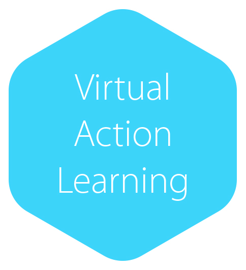 Virtual AL.jpg