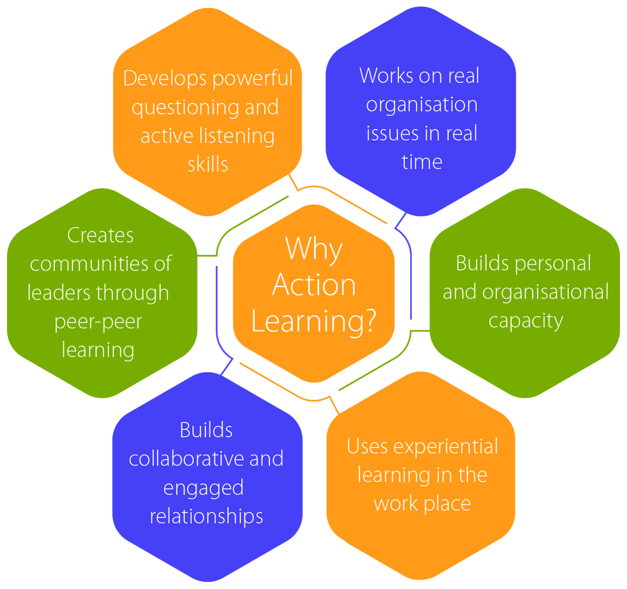 Why Action Learning