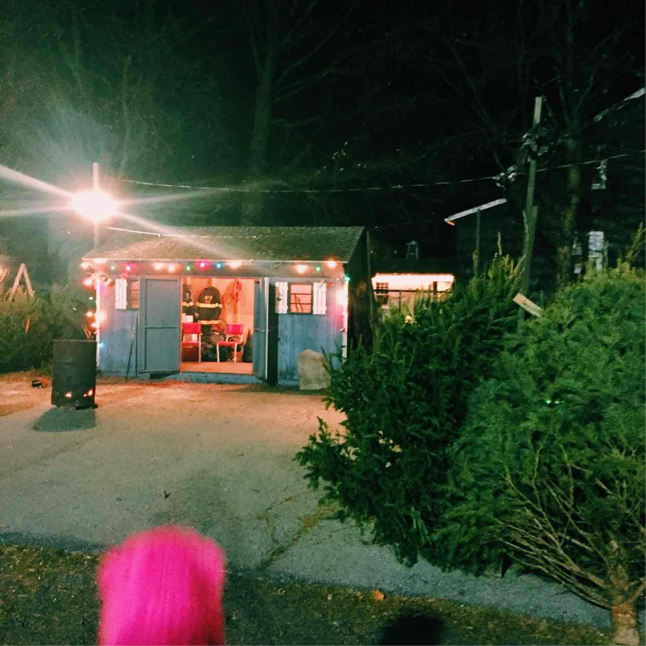 The Christmas tree shed from the Beacon Engine Fire Company next to Dogwood's parking lot.  Photo Credit: Katie Hellmuth Martin