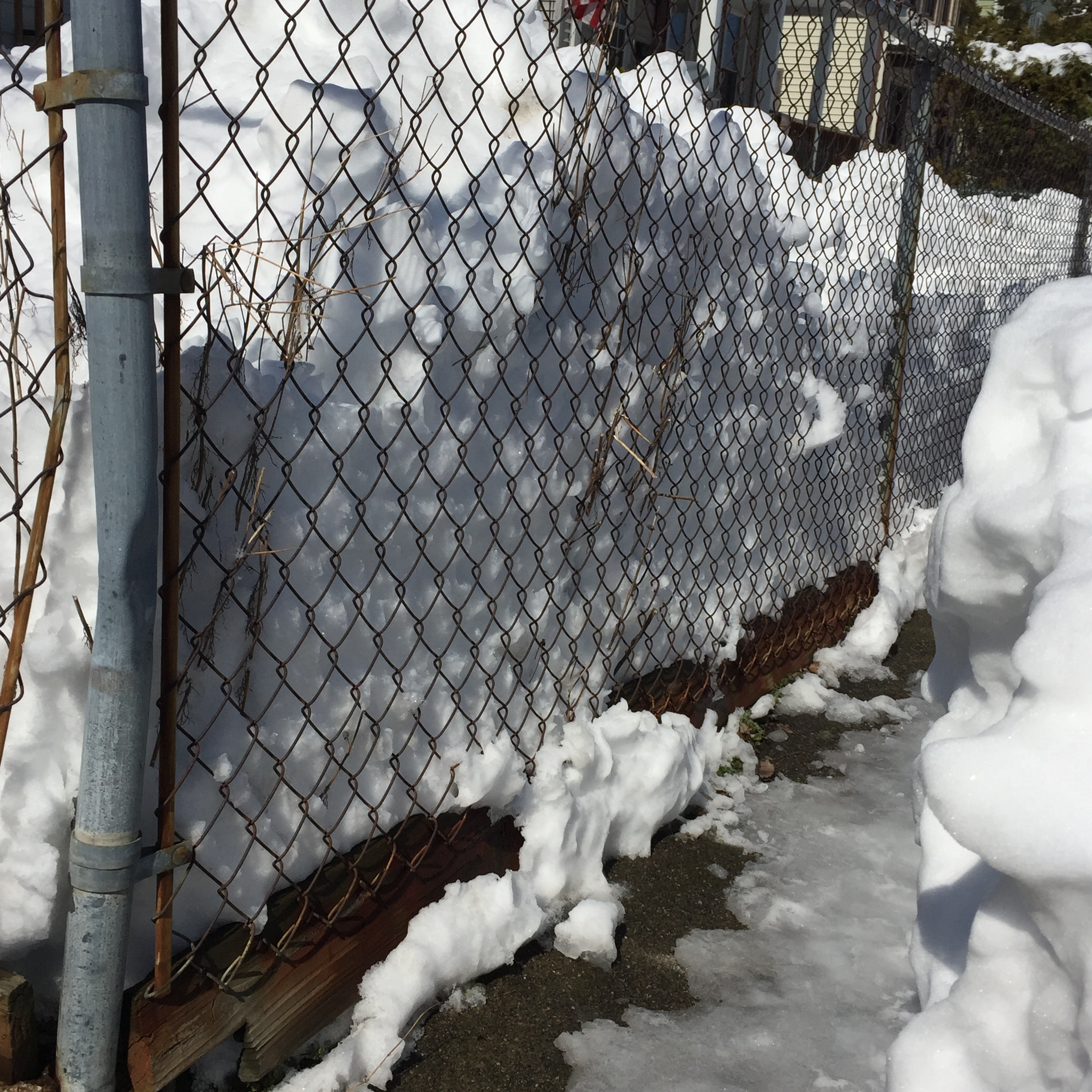 Watch for buckling fences pushed by unbalanced yards full of snow.