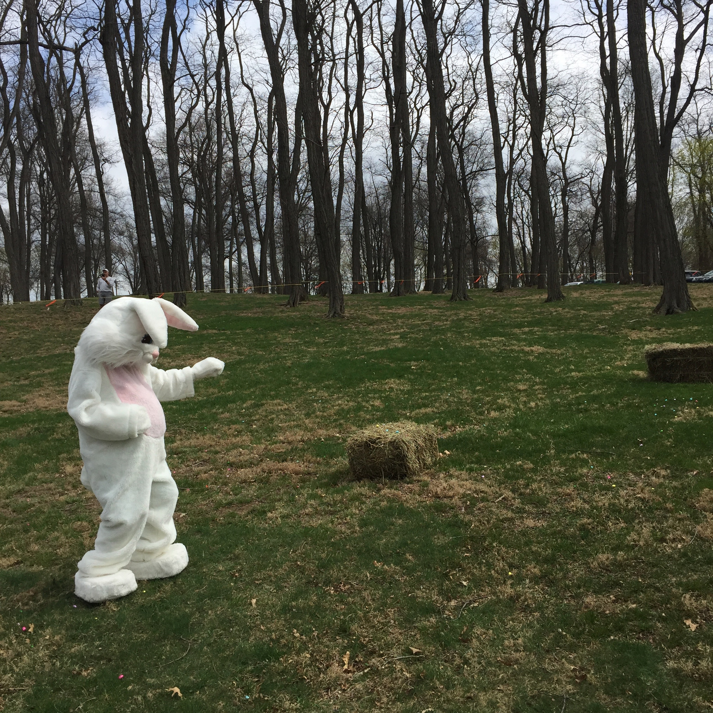 The Easter Bunny at the 2017 Easter Egg Hunt at Memorial Park. Photo Credit: Katie Hellmuth Martin
