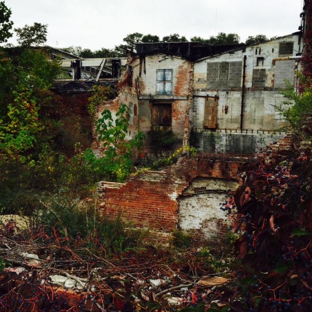 Development & Buildings Guide — A Little Beacon Blog
