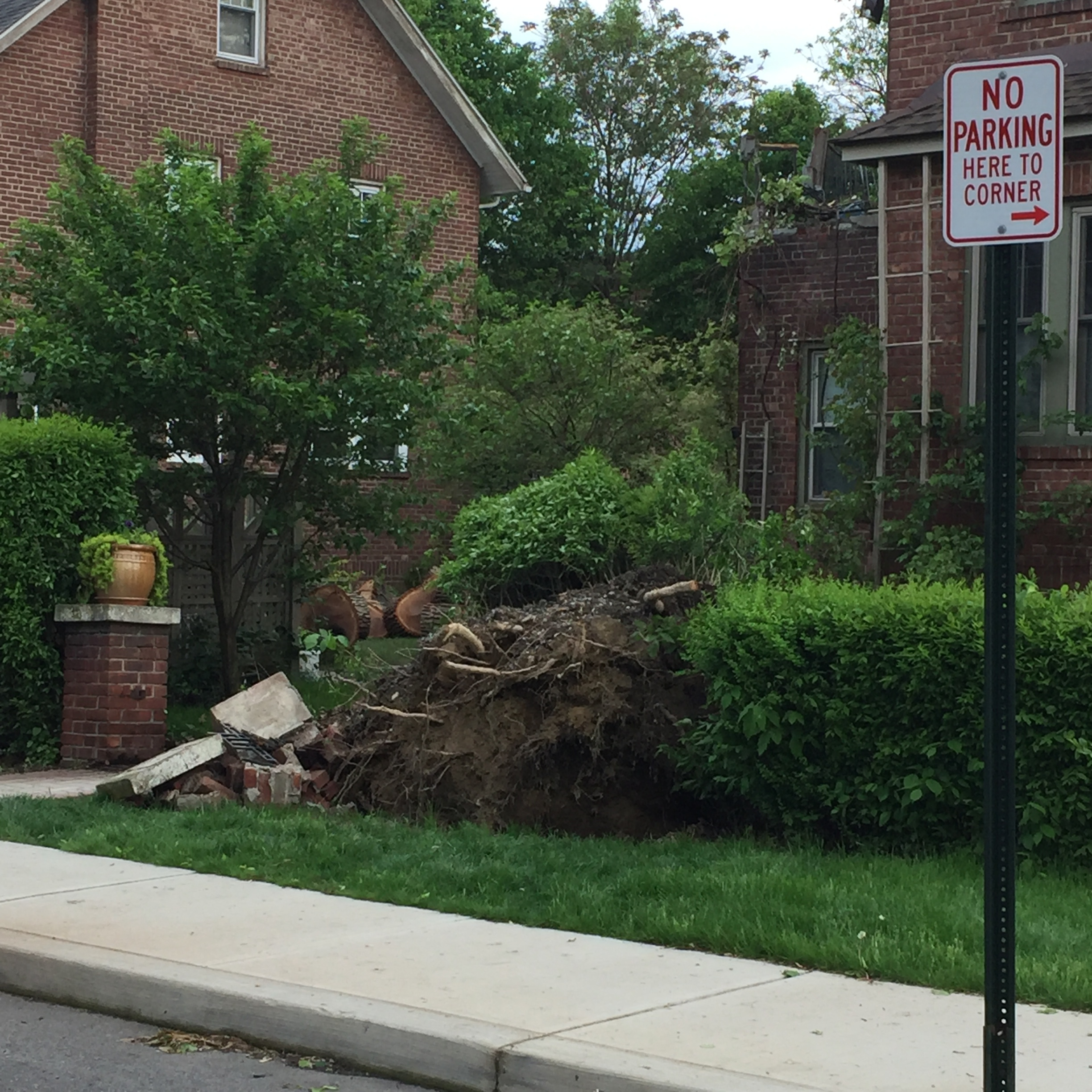 A house on Rombout Avenue.  Photo Credit: Katie Hellmuth Martin