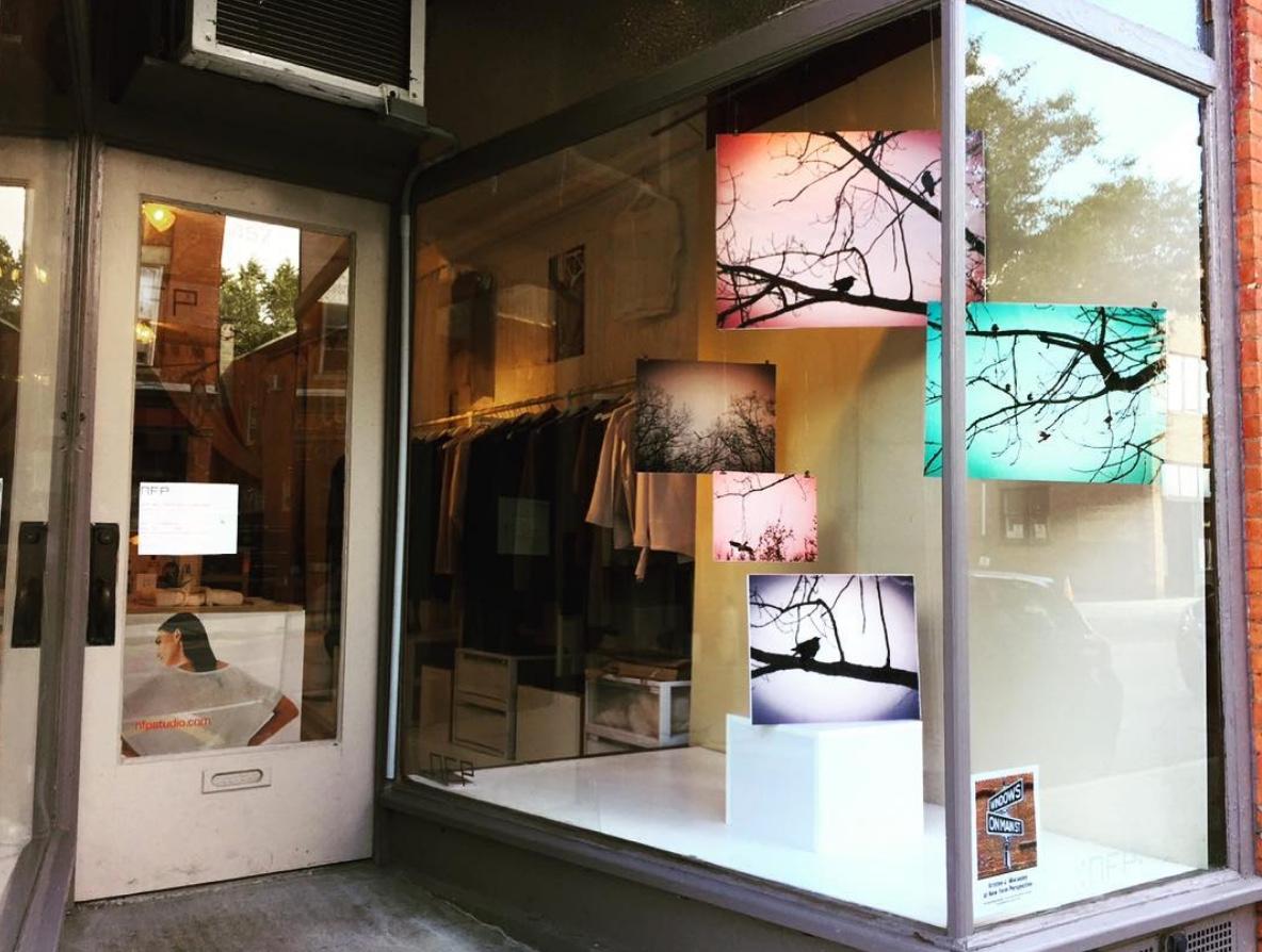 Window:  NFP (New Form Perspective),504 Main Street  Artist:  Kristen J. Macauley  Photo Credit:  Windows on Main