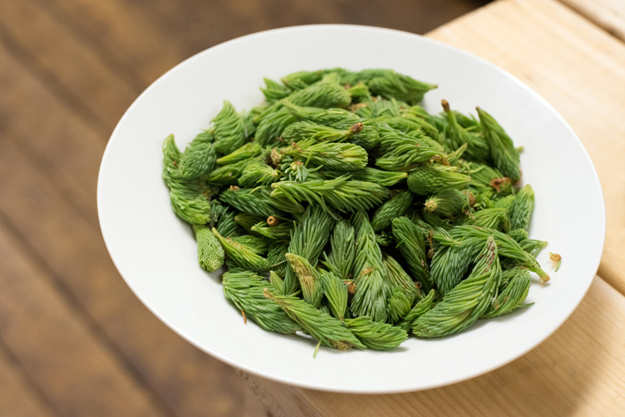 SPRUCE TIPS – are just that – the tips of new spruce growth available in May-June. They are tender, bright green and a bit citrusy. Very versatile, they can be brined, pickled or even candied!