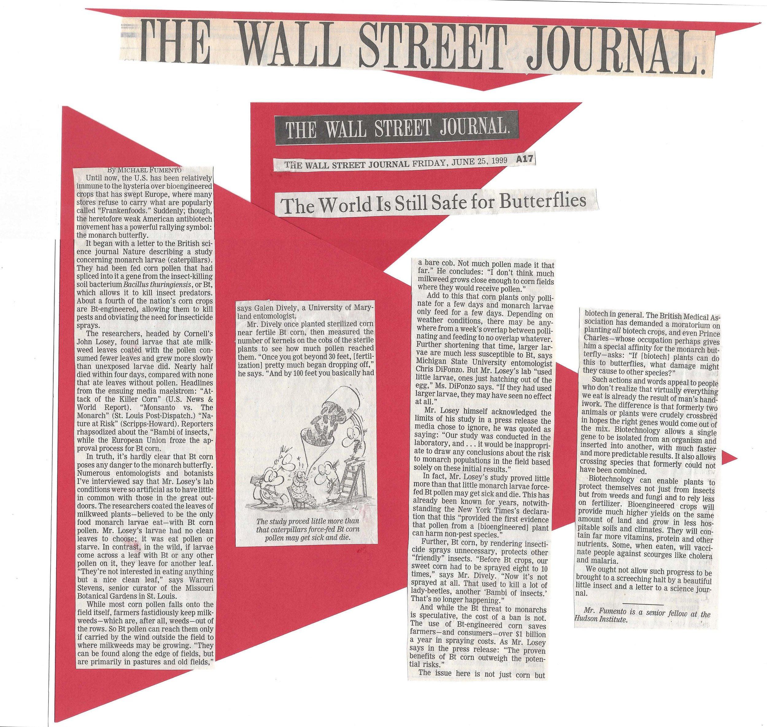 Wall Street Journal 06.25.99.jpg