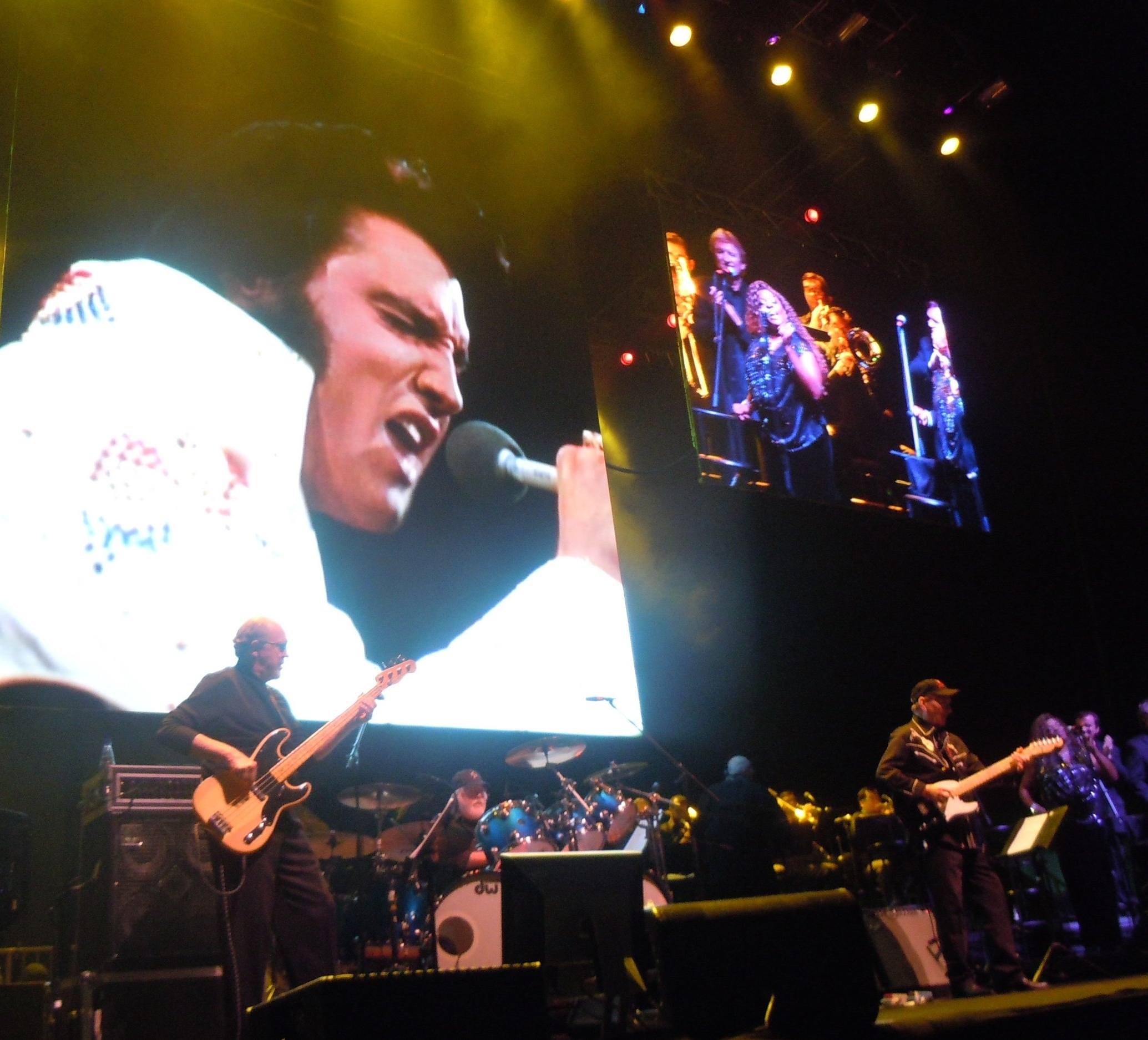 Elvis in Concert, Brazil
